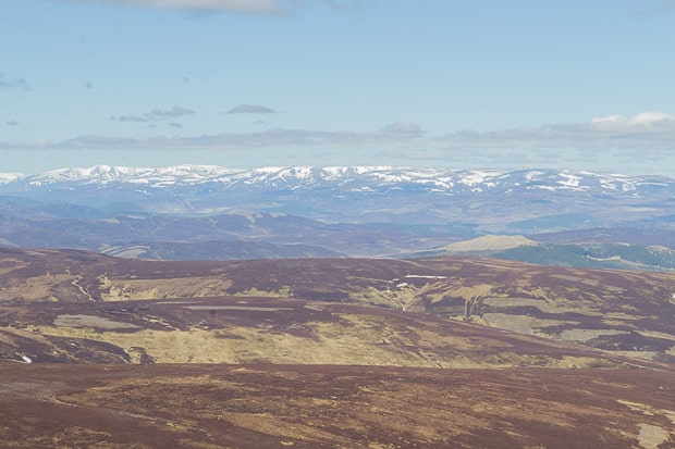 In the far distance in this photograph are the 2 Munro's of Dreish and Mayer.