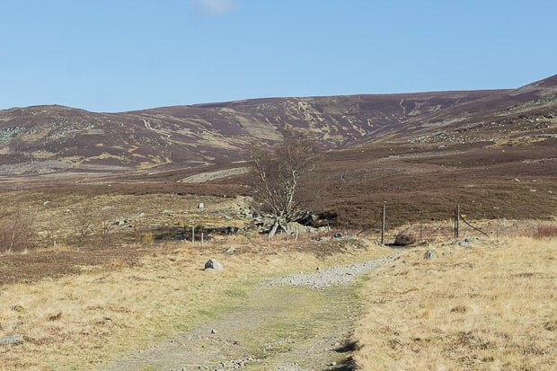 Walking North into Glen Esk. Old rusting iron gate on the path.