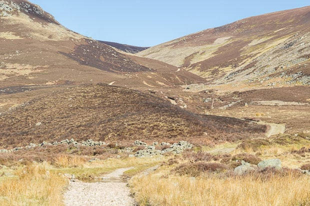 Landrover track to Mount keen winds upwards in the distance through the gaps in the hills.