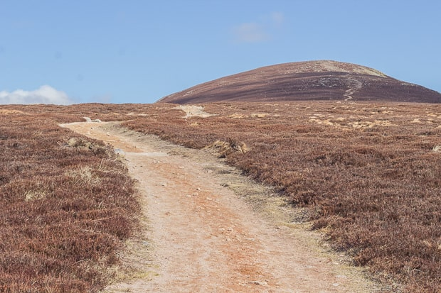 The plateau. Track to the summit of Mount Keen clearly visible.
