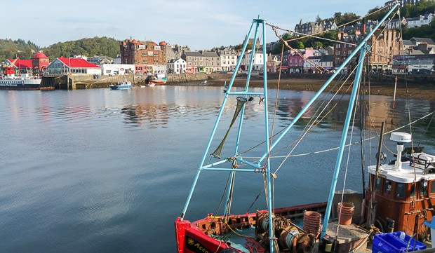Looking North over Oban harbour.