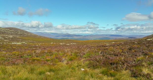 View looking East from path to Lochnagar.