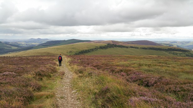 Browne Knowe The Southern Upland Way.