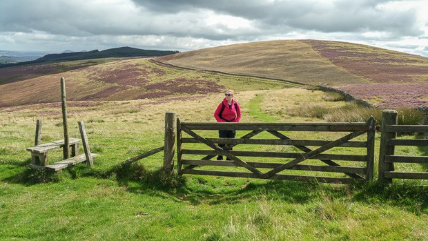 A stile and gate on The Southern Upland Way walking towards The Three Brethren.
