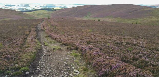 View west along The Southern Upland Way heading towards The Three Brethren.