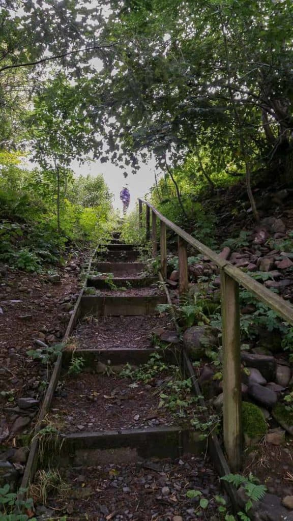 Steps at the start of Minch Moor walk to Southern Upland Way.
