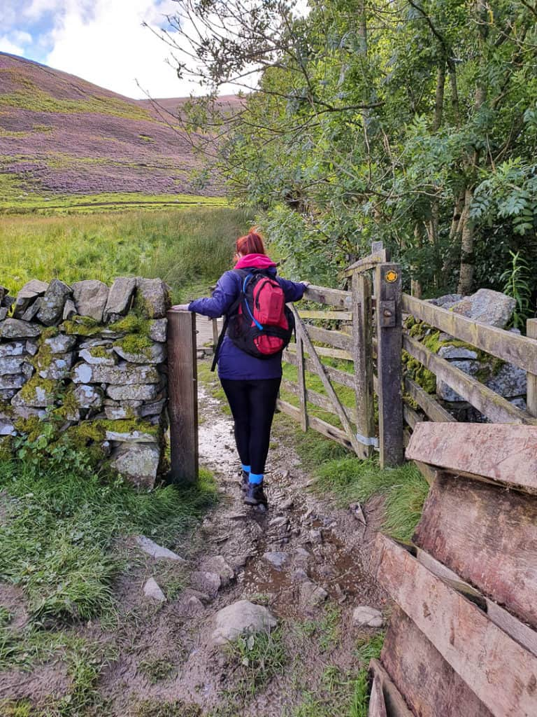 Lynne going through gate into field of long rush grass.