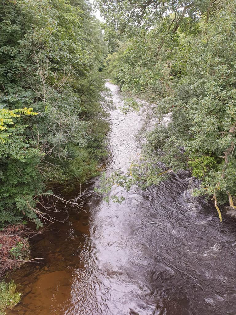 Looking at the Yarrow Water from General's Bridge