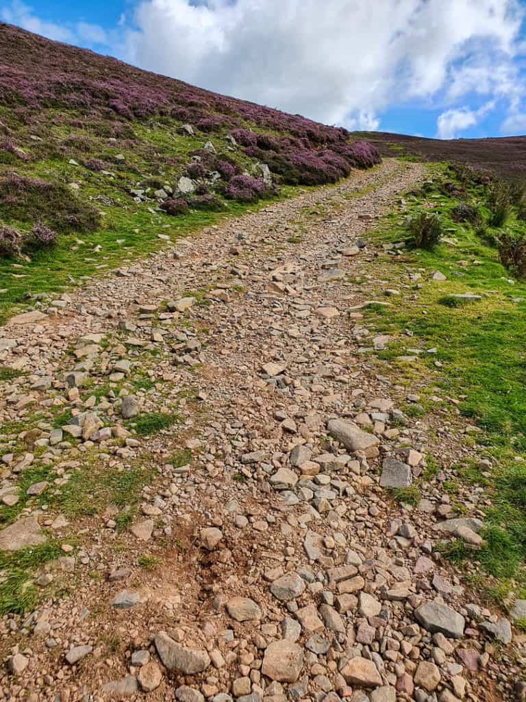 Looking up the steep climb of the track on the side of Foulshiels Hill